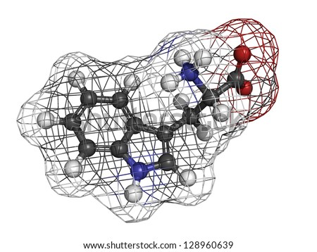 Tryptophan (Trp, W) amino acid, molecular model. Amino acids are the building blocks of all proteins. Atoms are represented as spheres with conventional color coding: hydrogen (white), etc - stock photo