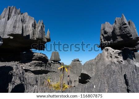 Tsingy de Bemaraha, Madagascar - stock photo