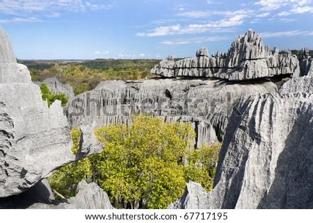 Tsingy de Bemaraha, National Park in Madagascar, Unesco World Heritage - stock photo