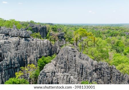 Tsingy de Bemaraha Reserve. Mountain district of the island of Madagascar. - stock photo