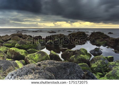Tthe coast of Capelas on the island of Sao Miguel (Azores) - stock photo