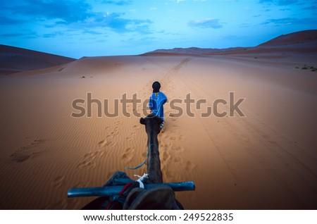 Tuareg walking in the sahara desert - stock photo