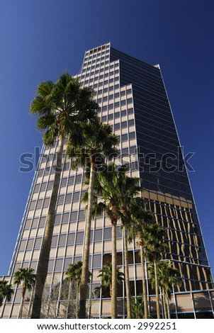 Tucson Downtown Building and Palm Trees - stock photo