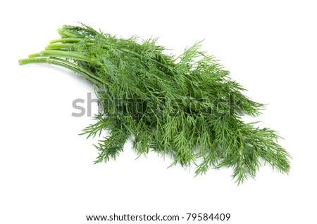 tuft of dill over white background