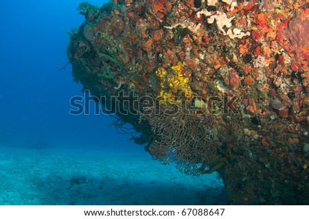 Tugboat sunk as an artificial reef encrusted with coral growth, picture taken in south east Florida. - stock photo