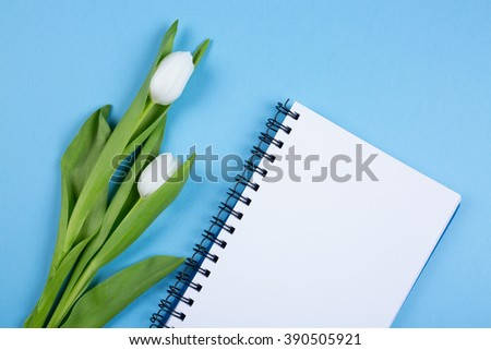tulip bouquet and blank notebook  - stock photo