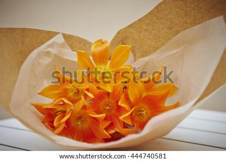 Tulip flower bouquet - stock photo