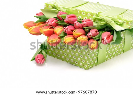 tulips and gift box on a white background - stock photo