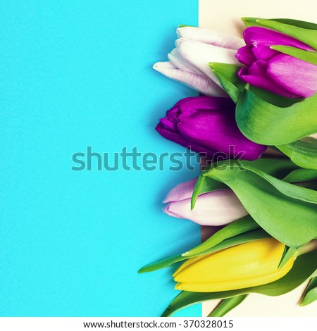 Tulips and Love. Minimal Fashion Style - stock photo