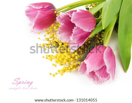 Tulips and mimosa flowers bunch isolated in white background with sample text - stock photo