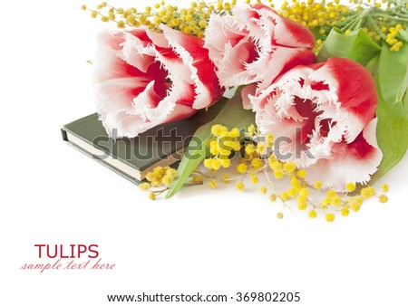 Tulips and mimosa flowers bunch with book isolated on white background. Teacher's day concept - stock photo