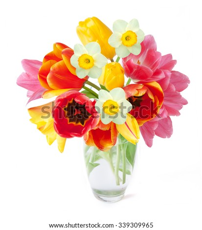 Tulips and narcissus flowers bunch in vase isolated on white with sample text - stock photo