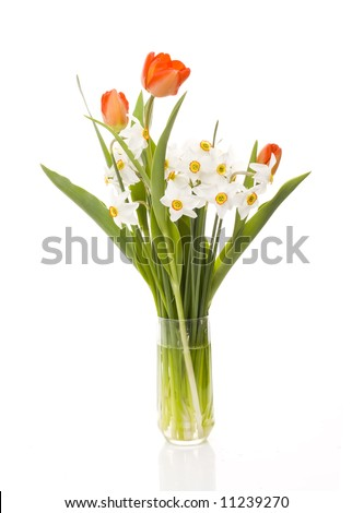 tulips and narcissuses  in a glass
