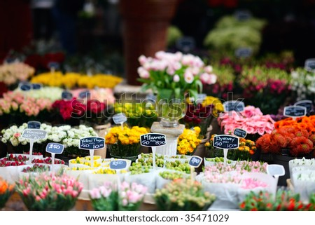Tulips at floating flower market in Amsterdam, The Netherlands - stock photo