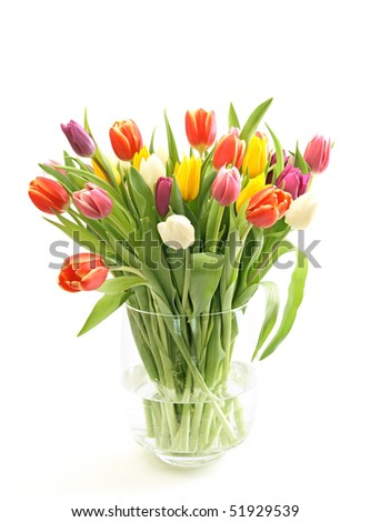 Tulips bouquet in a glass vase