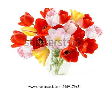 Tulips bunch isolated on white background - stock photo