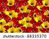 Tulips flowers background - stock photo