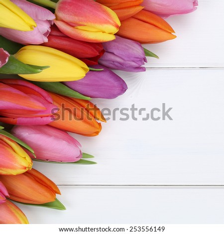 Tulips flowers in spring, Easter, birthday or mother's day on wooden board - stock photo