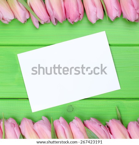 Tulips flowers in spring with greeting card and copyspace for your own text - stock photo