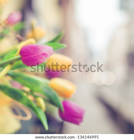 Tulips for Sale at Street Market in Paris - stock photo