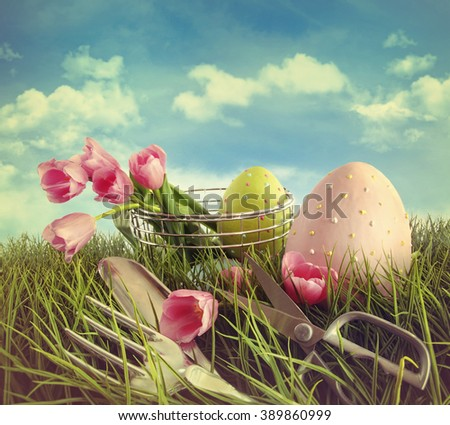 Tulips garden tools and easter eggs in field with blue sky - stock photo