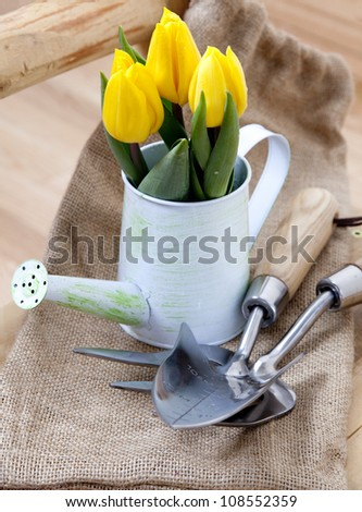 Tulips in the watering can,  little shovel and fork for gardening - stock photo