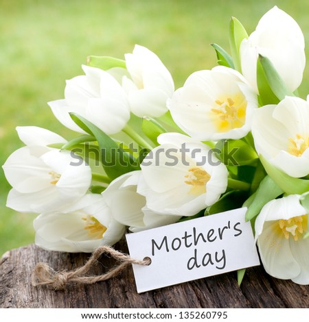 Tulips, label: Mother's day - stock photo
