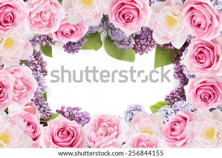 Tulips, lilac and roses flowers background isolated on white with sample text - stock photo