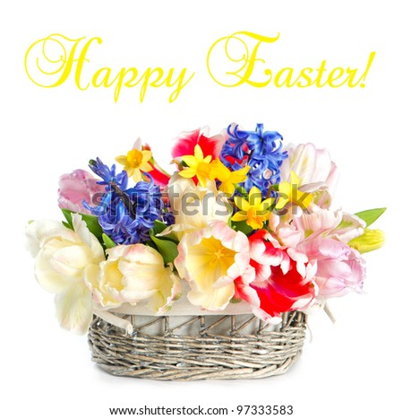 tulips, narcissus and hyacinth. colorful spring flowers in basket over white background. happy easter! card concept