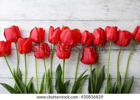 tulips on white wooden background, flowers - stock photo