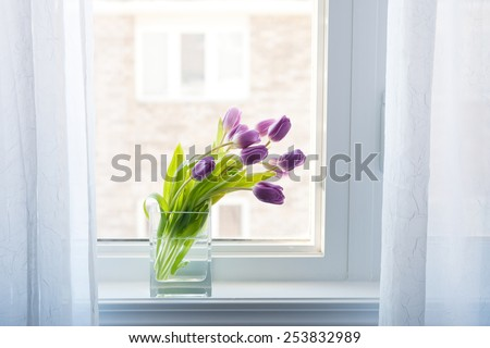Tulips On Windowsill - stock photo
