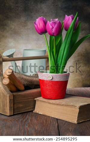 tulips pot and garden tools on the table