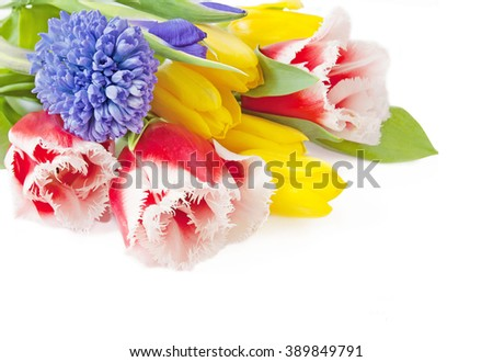 Tulips, roses and mimosa flowers bunch isolated on white background - stock photo