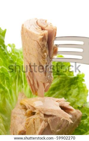tuna and salad - stock photo