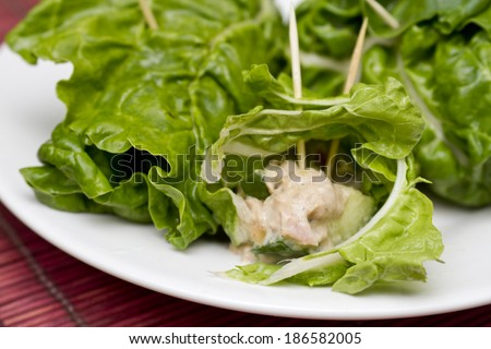 Tuna and spinach wraps - stock photo