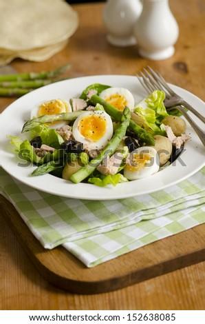Tuna, asparagus and boiled egg salad - stock photo