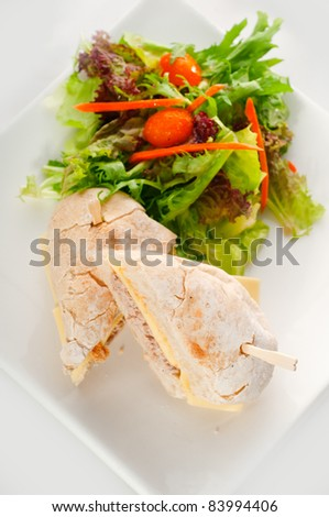 tuna fish and cheese sandwich with fresh mixed salad - stock photo