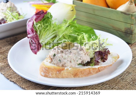 Tuna fish  sandwich with salad on on white plate   - stock photo