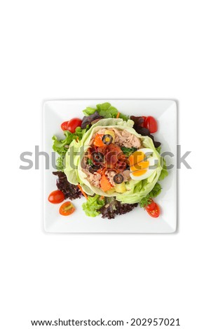 Tuna Nicoise Salad on isolated blackground. - stock photo