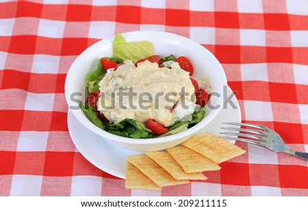 Tuna Salad on bed of lettuce with cherry tomatoes and club crackers on red plaid tablecloth background. - stock photo