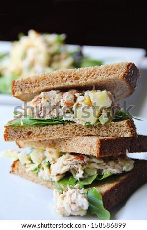 tuna salad sandwich - stock photo
