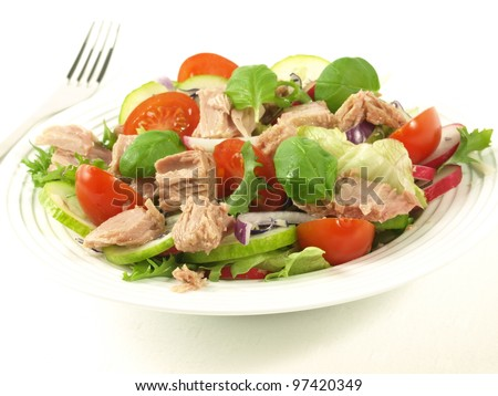Tuna salad with different vegetables on isolated background. - stock photo