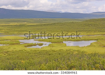 Tundra Pond in the Wilderness along the Denali Highway in Alaska - stock photo