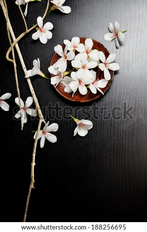 TUNG FLOWER - stock photo