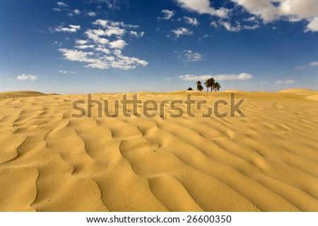 Tunisia. Somewhere on desert near Douz... - stock photo