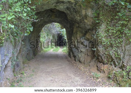 Tunnel and road in nature leading to a dark cave. Halloween concept.