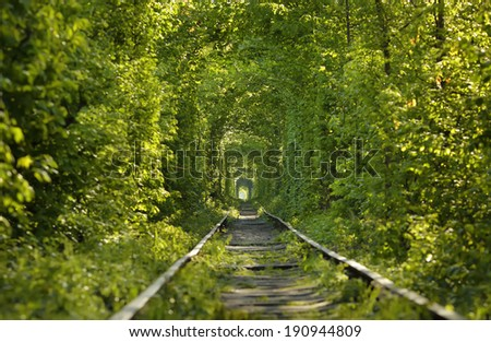 tunnel of love - stock photo