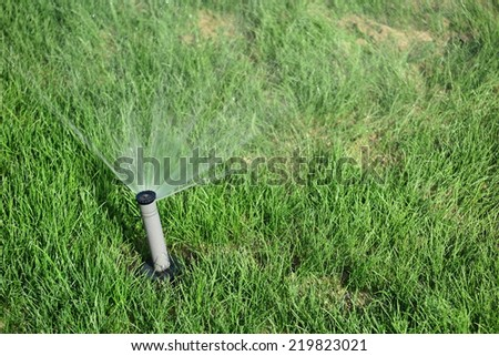 Turbo-driven pop-up sprinkler watering the fresh green lawn grass in the summer garden