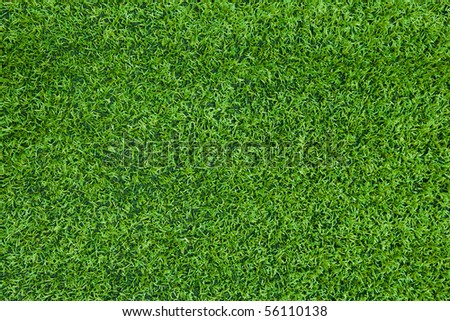 Turf background - stock photo
