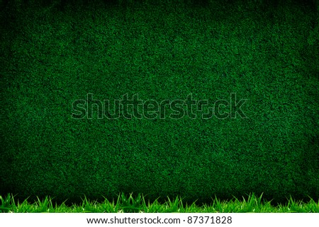 Turf background with grass texture for your design - stock photo
